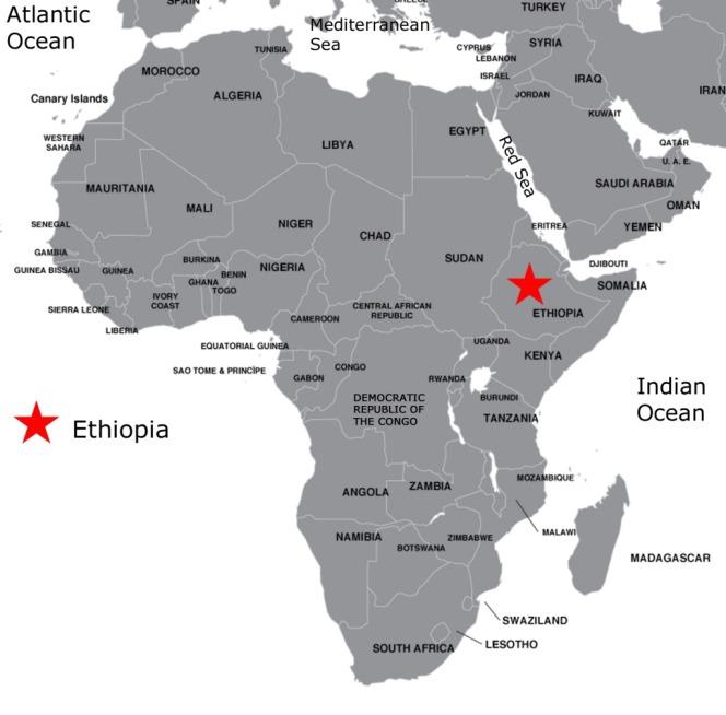 Help Bring Bee Free Apiaries ToEthiopia!