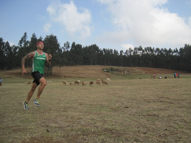 post 1 am plane arrival, spanish cheese and meat feast and 3 hours of sleep, Eucalyptus forest running with my brother,