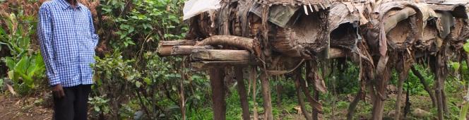Woven Bamboo Baskets