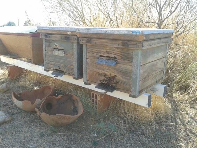 Ventilation takes place in the hive as well as in front of the entrance in order to pull the hot air out.